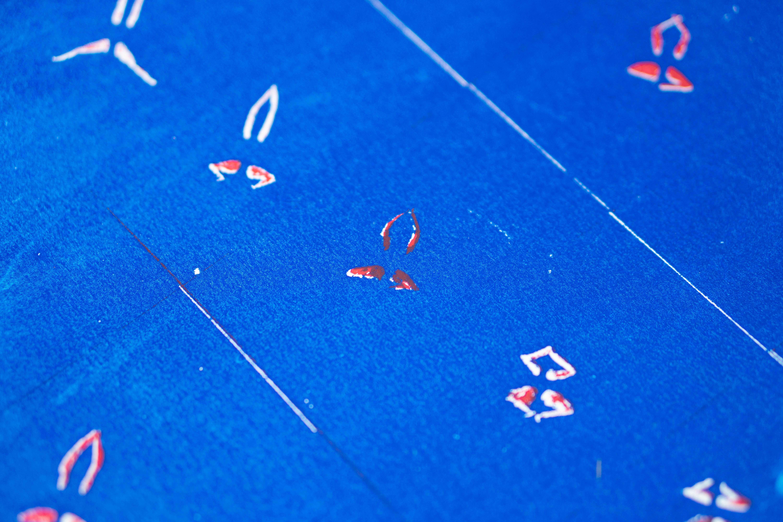 הדפסי משי - רחל גוטגרץ (צילום: טל סולומון ורדי)