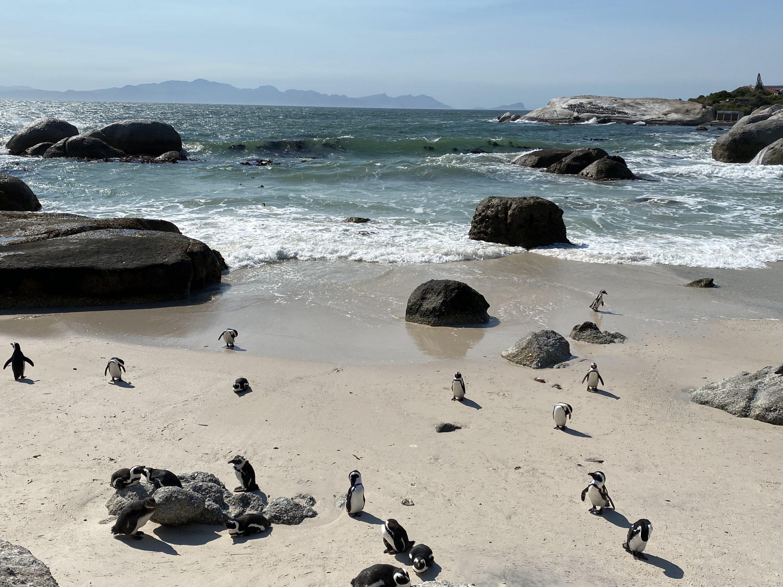 Cape Town. Photo: Liran Hadashi